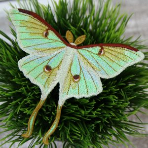 decorative embroidered moth